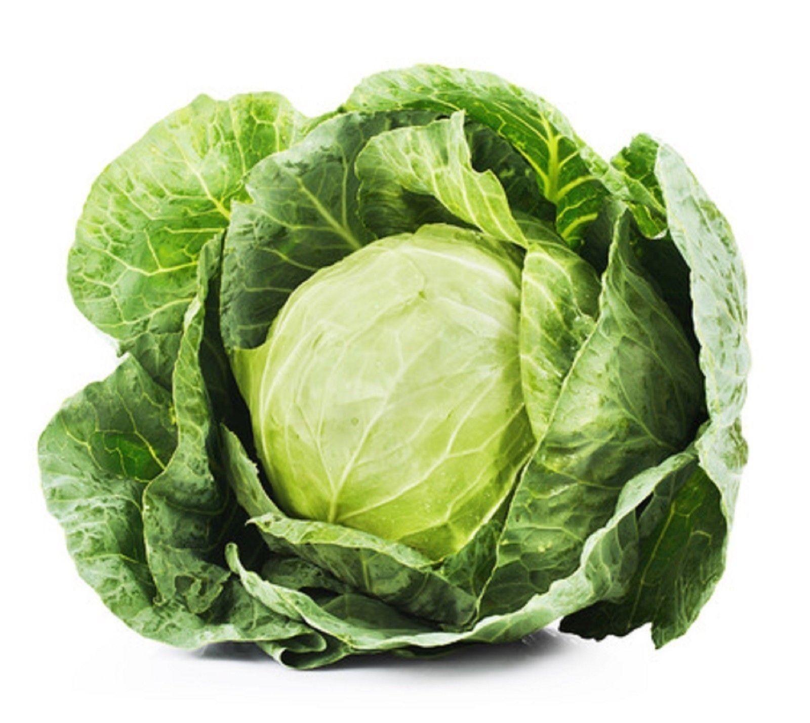 Cabbage Golden Acre Non GMO Heirloom Garden Vegetable Seeds Sow No GMO® USA - $1.97 - $2.96