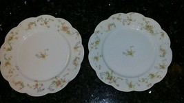 """TWO Beautiful Haviland Limoges 9.5"""" Plates Pink... - $23.38"""