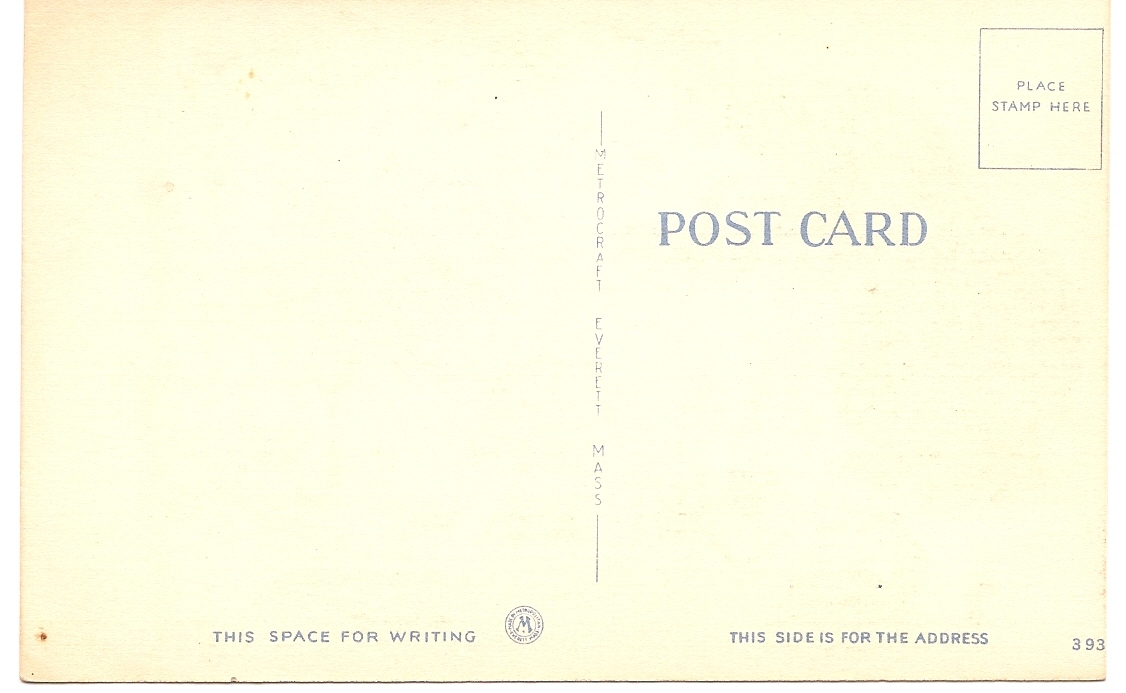 """Mid-Century Comic Post Card """"Boy, This Is The Life"""" Unused & Uncirculated!"""