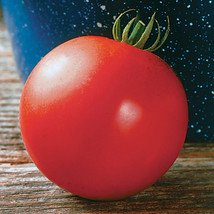SHIP From US, 10 Seeds Mountain Fresh Plus Hybrid Tomato, DIY Vegetable Seeds AM - $18.99