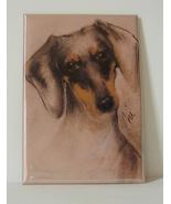 Dachshund Hound Dog Art Magnet Solomon - $6.50