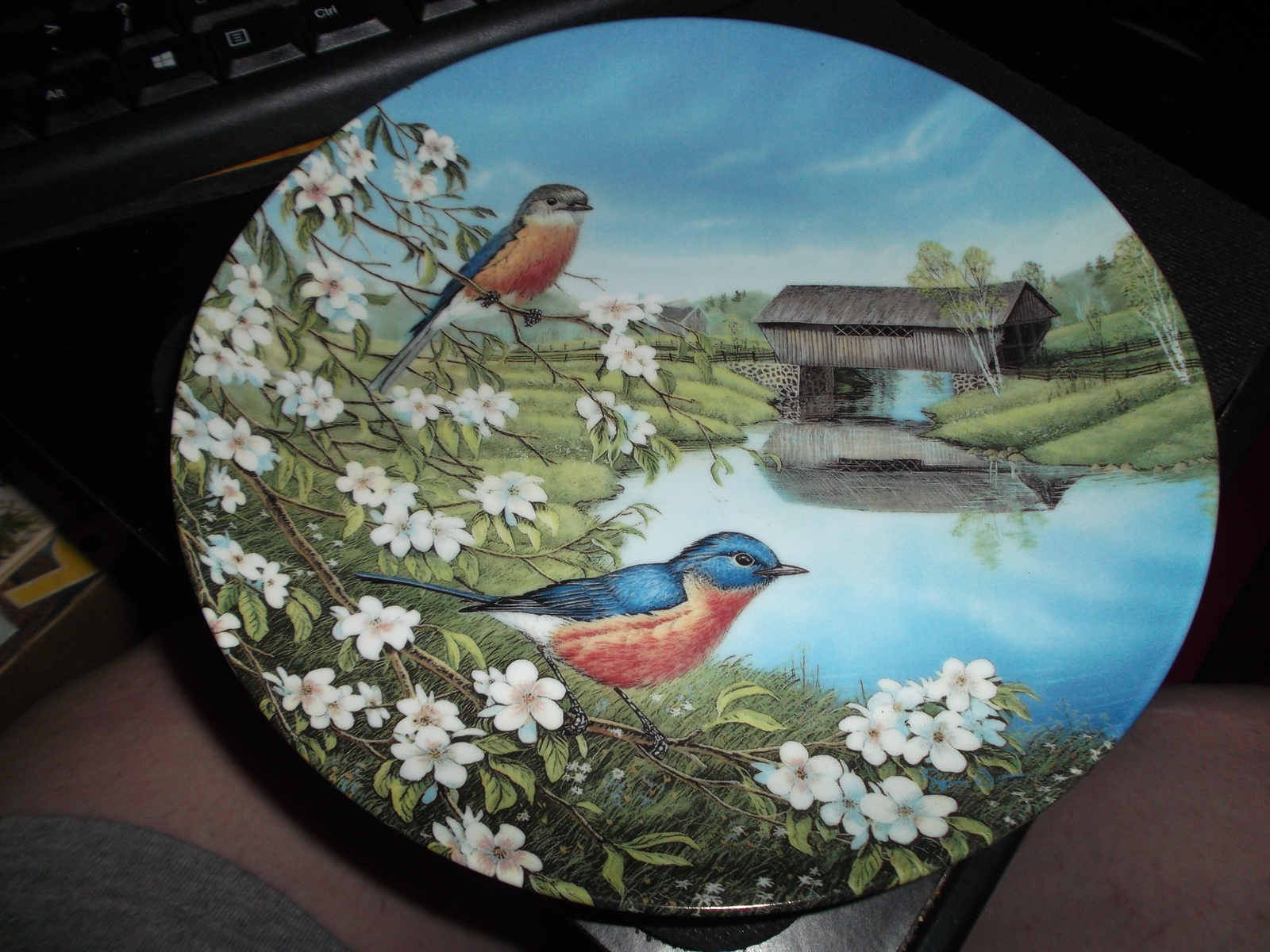 Knowles Bluebirds In Spring by Sam Timm 1990