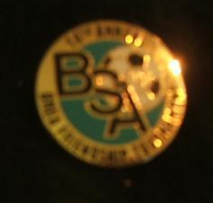 14th Annual BSA Brea Friendship International Pin Pinback