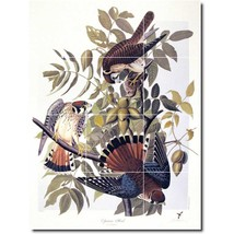 John Audubon Birds Painting Tile Murals BZ00302. Kitchen Backsplash Bath... - $120.00+