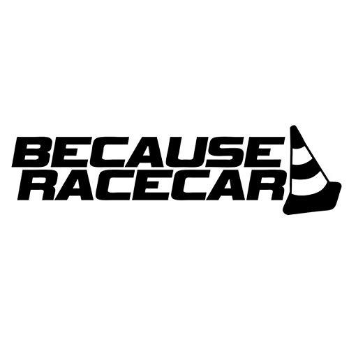 DECAL-STYLE - 20x5.5CM BECAUSE RACECAR Funny Personality Reflective Car Stickers