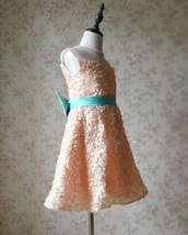 Girl Blush Lace Party Dress Blush Flower Embroidery Flower Girl Dresses 4-16 NWT image 4