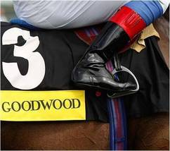 DVD - HISTORY of GLORIOUS GOODWOOD: 200 YEARS of HORSE RACING 1802-2002 - $34.99