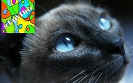 Digital Image Photo Wallpaper Desktop Background Screensaver Picture Art 35 - $0.99