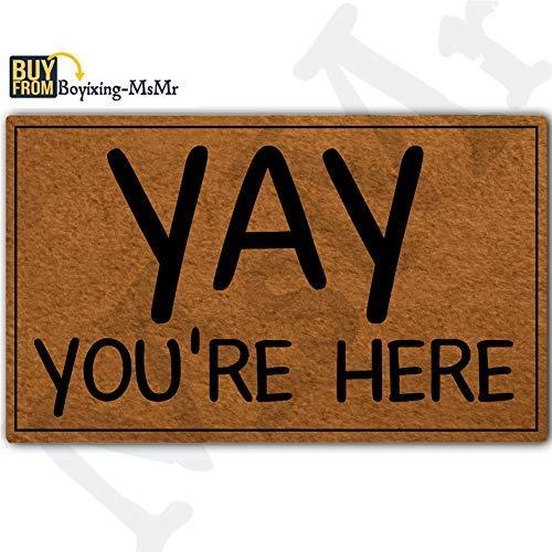 MsMr Funny Doormat Entrance Floor Mat Welcome Mat Home Doormat Indoor Outdoor De
