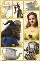 Beauty and the Beast Movie Poster (2017) - Emma Watson, Luke Evans, Dan ... - $19.95
