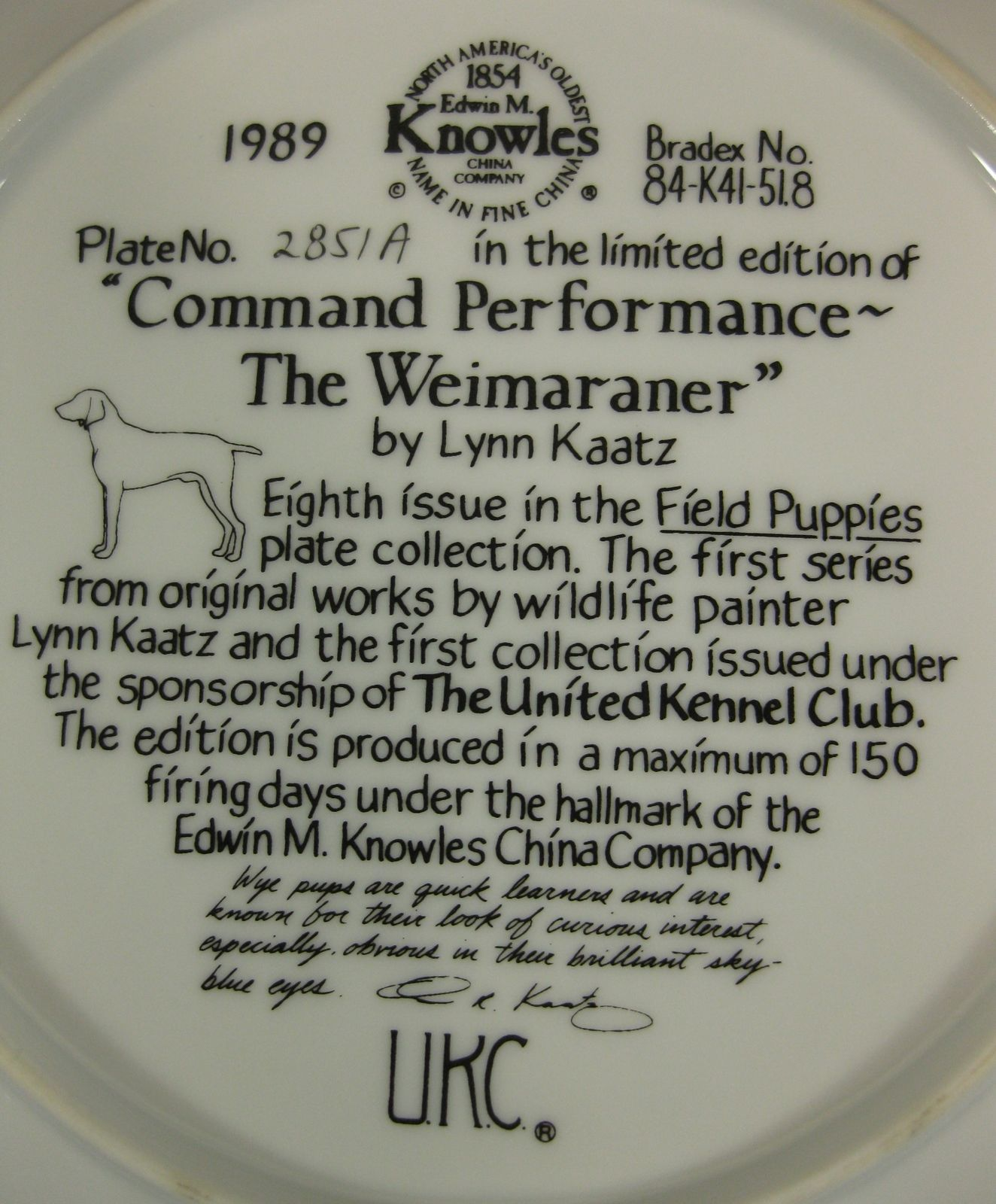 Command Performance The Weimaraner Collector Plate Field Puppies Lynn Kaatz Dog