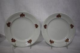 "Pair of 2 Antique E. Walley NIAGARA SHAPE 8.5"" Ironstone Plates w/Lustre... - $49.99"