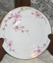 Porcelain Dessert Plate-Cherry Blossoms- Fraureuth Germany-1920's - $9.00