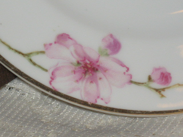 Porcelain Dessert Plate-Cherry Blossoms- Fraureuth Germany-1920's