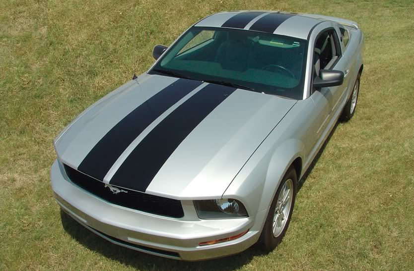 """Ford MUSTANG """"WILDSTANG"""" Racing and Rally Stripes Kit"""