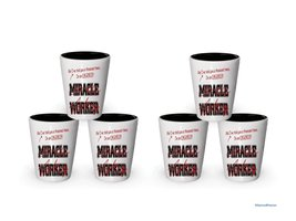 I'm a Engineer shot glass, Not a Miracle Worker - Funny gifts for Engineers (6) - $29.35
