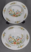 Set (2) Aynsley COTTAGE GARDEN PATTERN Rimmed Soups ENGLAND - $55.43