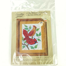 Vintage Colored Counted Cross Stitch Kit Cardinals 50256 5x7 Something Special - $21.78