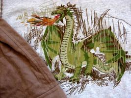 New Mulberribush Dragon Fire Set Top Flannel Pants 3T 3 - $27.99