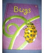 Bugs, Usborne Beginner Children's Book - $4.99