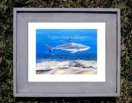 Black Tip Reef Shark S/N Limited edition print from original canvas wall... - $34.95