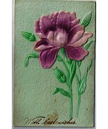 Flower Postcard Applied Purple Iris Flower Best Wishes 1909 - $4.74