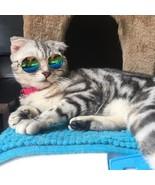 PetArtist® Fashion Cat Sunglass Funny Puppy Kitten Sun Glass Cats Groomi... - $6.89