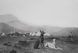 DOG Hounds Guard Arab Desert Camp - SUPERB 1881 Print by Gerome - $40.50