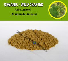 POWDER Anise Aniseed Pimpinella Anisum Organic Wild Crafted Fresh Natural Herbs - $7.85+
