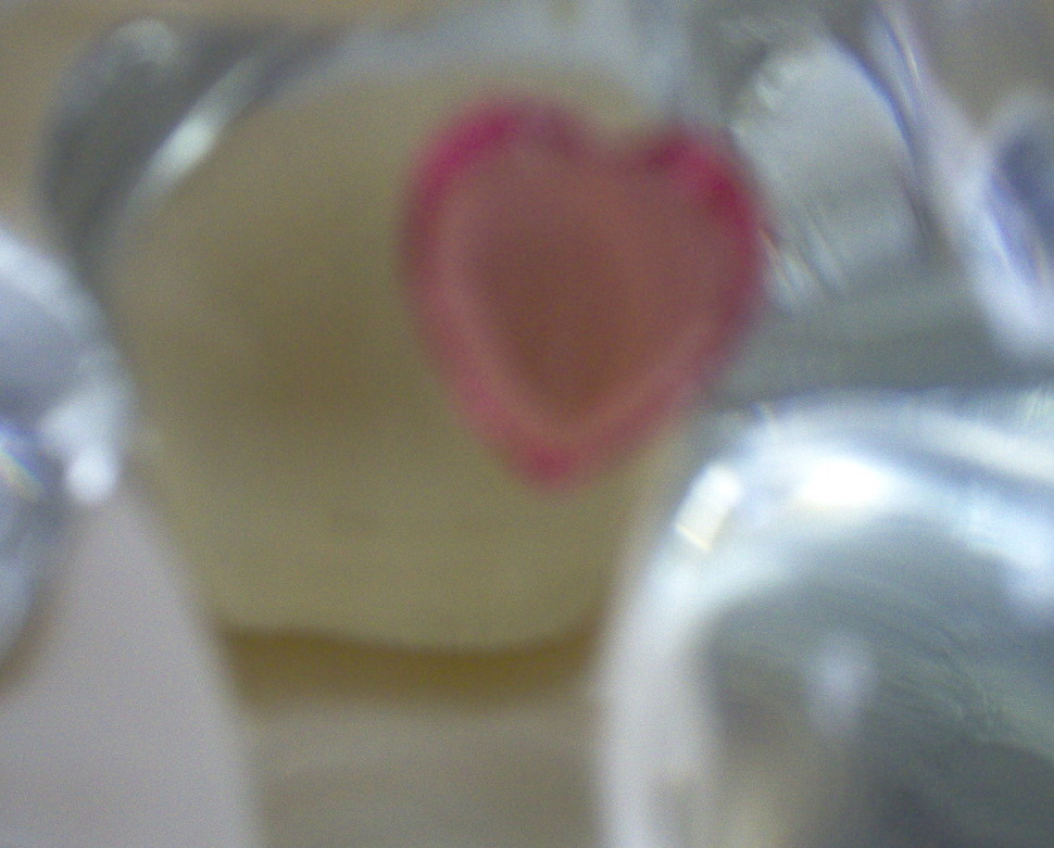FENTON RED HEART BEAR  PAPER WEIGHT MARKED