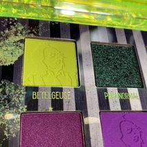 NEW IN BOX Melt X Beetlejuice RECENTLY DECEASED palette SOLDOUT4ever image 3