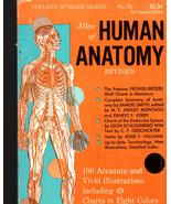 Atlas of Human Anatomy  - $4.50