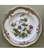 Stafford Flowers Fine China by Spode Individual Bread And Butter Plate 6... - $74.80