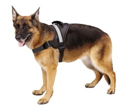 Big Dog Harness Soft Reflective No Pull Black Size L 26-36 Inch Safe Str... - $23.99