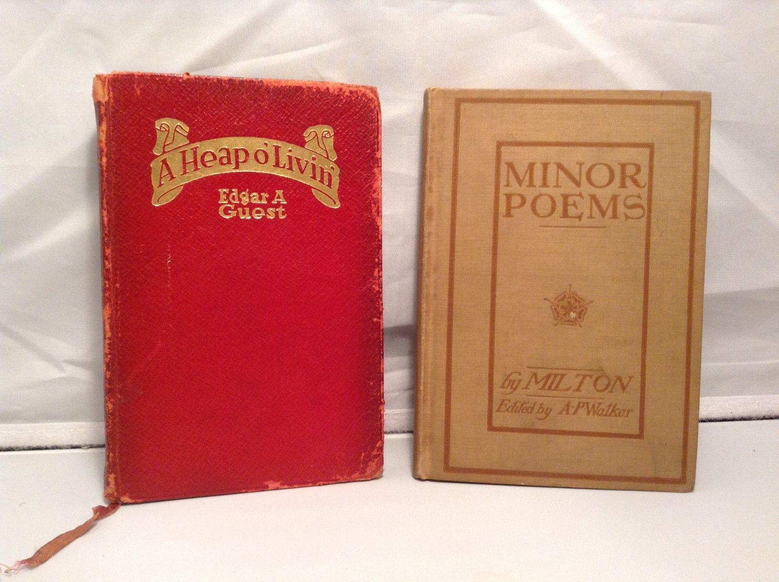 Vintage Poetry Books Set of 2