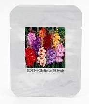 50 seed New Gladiolus Perennial Flower Seeds, DIY Flower Garden DO (4) - $9.99