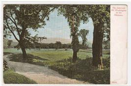 Intervale Mt Washington New Hampshire 1905c postcard - $5.94