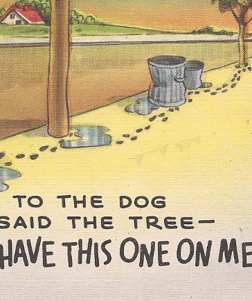 "MC Linen Humor Postcard ""To The Dog Said The Tree""! Unused & Uncirculated!"