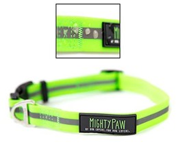 Mighty Paw Waterproof Dog Collar, Smell-Proof Active Dog Gear, Coated Nylon Webb