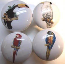 Cabinet Knobs W/ Parrot Macaw Cockatoo Exotic Tropical Birds - $21.50