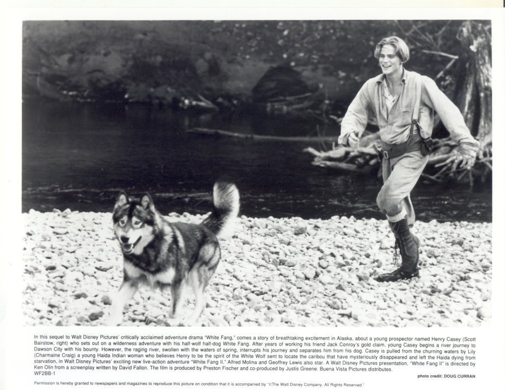 White Fang Ethan Hawke Press Promo Publicity Photo #3 Film Movie Jack London