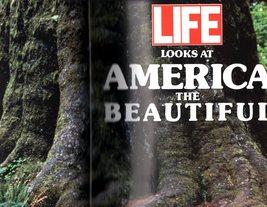 Life Looks at America the Beautiful 1990 Life Magazine - $14.95