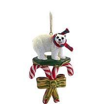 Conversation Concepts Bear Polar Candy Cane Ornament - $12.99
