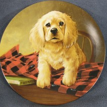 Shirt Tales The Cocker Spaniel Collector Plate Field Puppies Lynn Kaatz Dog - $27.95