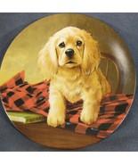 Shirt Tales The Cocker Spaniel Collector Plate Field Puppies Lynn Kaatz Dog - $27.95