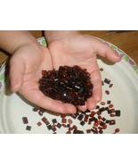 Over 100 Carats of Loose Natural Red Garnet Gem Mix - $21.99