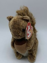 Ty Beanie Babies Nutty The Squirrel 2002 - $4.99