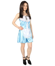 Adult Women's French Maid Costume   Lt. Blue Cosplay Costume - $37.85
