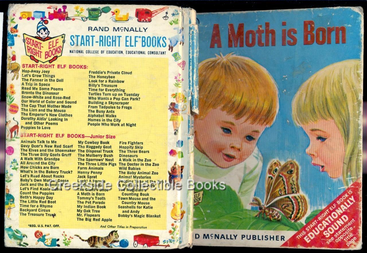 Start right elf a moth is born
