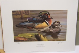 Iowa 2004/2005 Duck Stamp Print Dietmar Krummrey Ducks Unlimited Signed  - $29.69